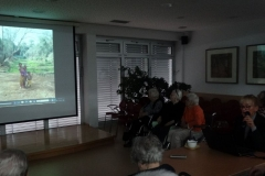 Potopisno predavanje s fotografijami gospe Jasne Cajnko z naslovom ''Obrazi Madagaskarja''