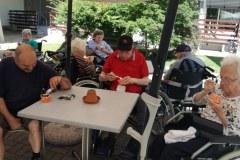 Šmornov piknik