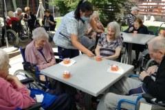 Sladoledni piknik